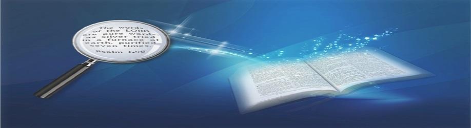 TMVC- Bible Search